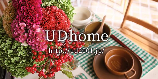UD home